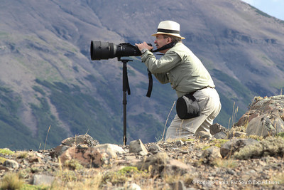 Photographing wildlife, Torres del Paine National Park, Patagonia, Chile