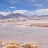 Salar de Aguas Calientes, Talar, Atacama Desert, Chile