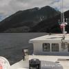 Noctiluca sailing the Aisén Fjord