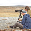 Photographing King Penguins at close quarters, Useless Bay, Tierra del Fuego, Chile