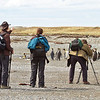 Photographing King penguins, Tierra del Fuego, Magallanes, Chile