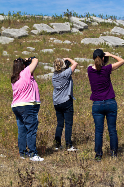 Photo Excursion to the Flint Hills
