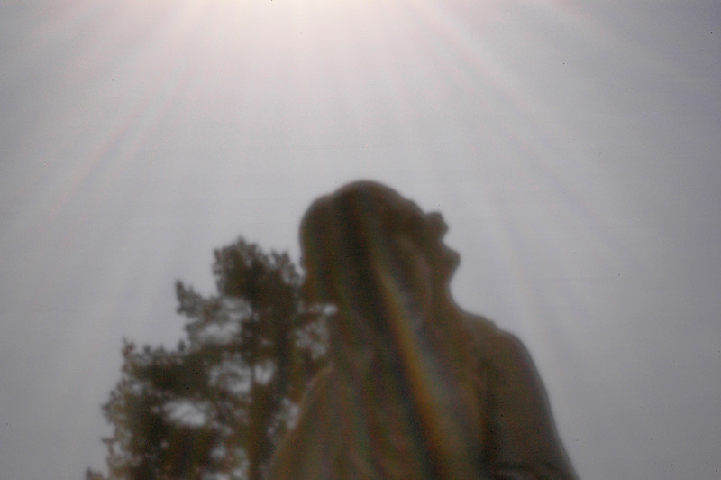 Forest Home (Waldheim) Cemetery - pinhole