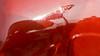 Red reflection  by Gabriella Hamley