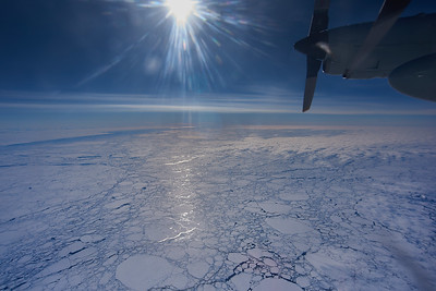 Ice Floes in the Ross Sea