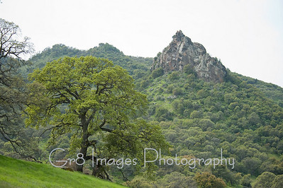 Sutter_Buttes_Tour_3_10-144