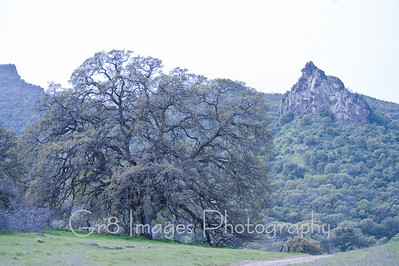 Sutter_Buttes_Tour_3_10-159
