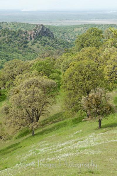 Propylite_Hills-195