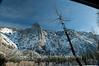 Yosemite_11_2010-226
