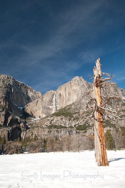 Yosemite_11_2010-188