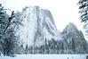 Yosemite_11_2010-243