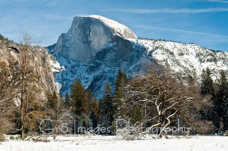 Yosemite_11_2010-224