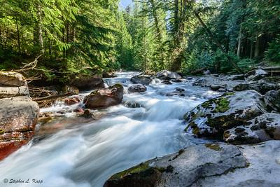 Avalanche Creek Under Mid-Morning Sun
