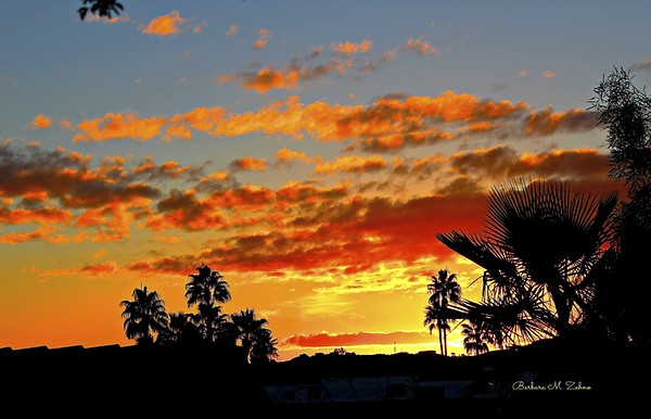 Barbara Zahno - Arizona Sunset