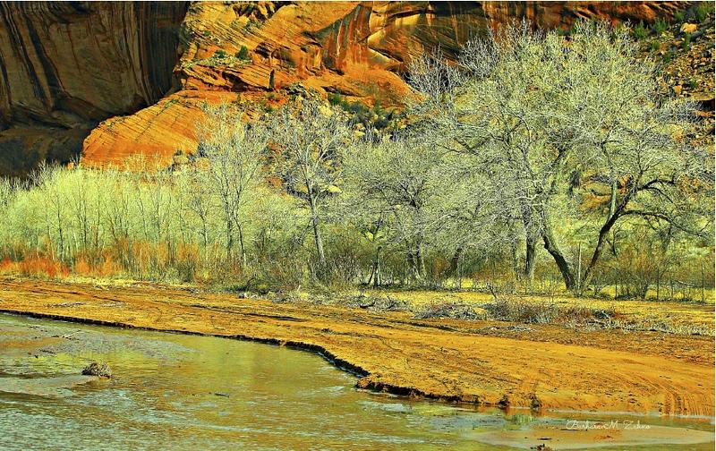 Barbara Zahno - Canyon de Chelly Spring II