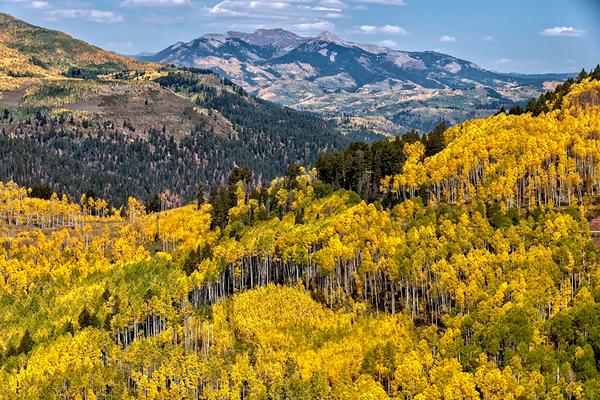 Boyce_Colorado_Vista