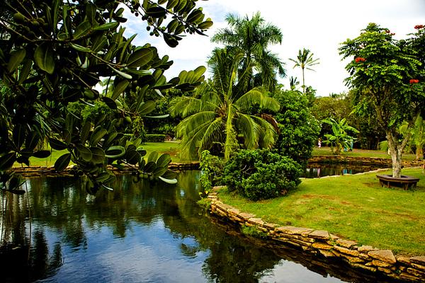 BMZahno_-_Hawaiian_Tropical_Paradise