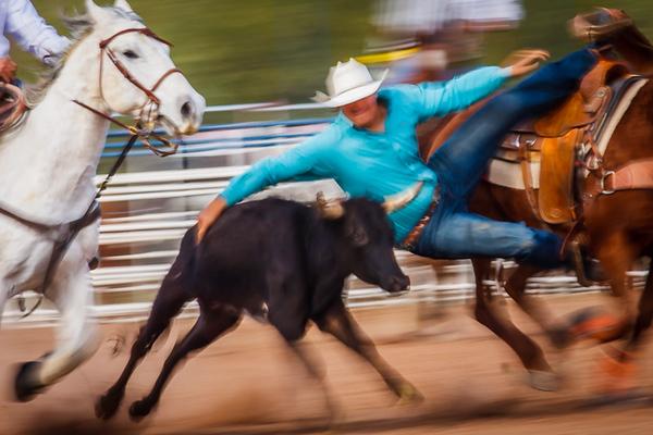 Barra_-_Cowboy