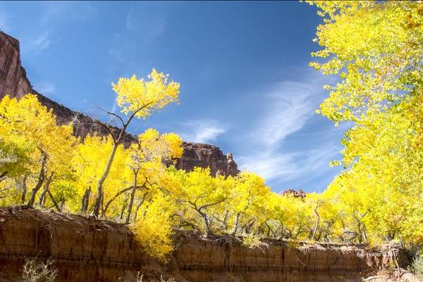 Holder canyon de chelly
