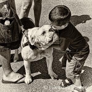 Dog Visit-