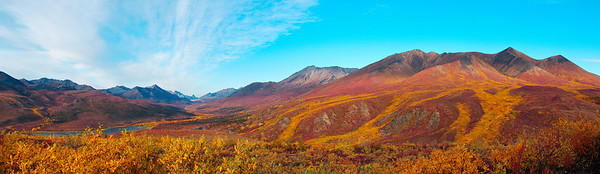 The Weavings of Nature - Tombstone Territorial Park, Yukon Canada. The autumn colours that are found in this part of far north Canada are nothing like I have experienced. I grew up surrounded by gorgeous autumn colours in eastern Canada. Nothing like this!!