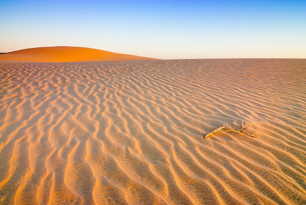 Vigar Well Ripples - Sand dunes at sunrise, Mungo National Park, NSW