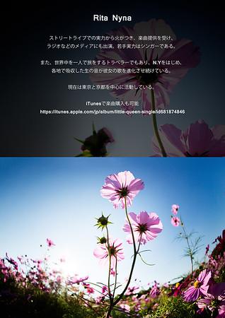 iTunes https://itunes.apple.com/jp/album/little-queen-single/id681874846