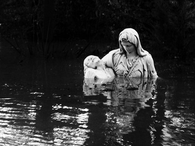 Sorrow in the Flood