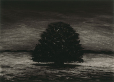 charcoal on paper image 52x72cm