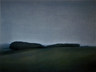 Winter Paddock, oil on canvas 137 x183cm 2005