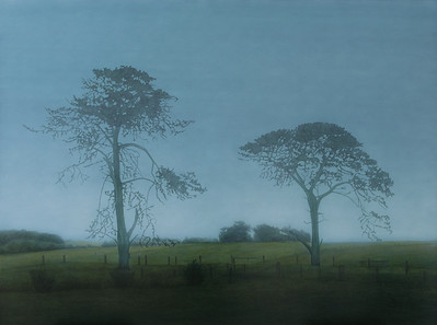 Hopkins Point Road #2, oil on canvas 137 x183cm 2008