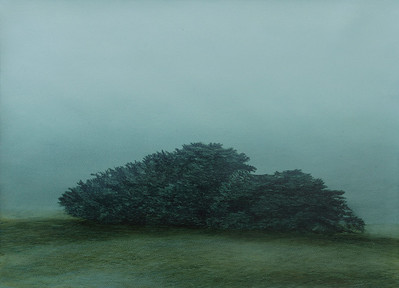 Winter Hedge , oil on prepared paper imag e52 x72cm framed 92 x72 cm 2009