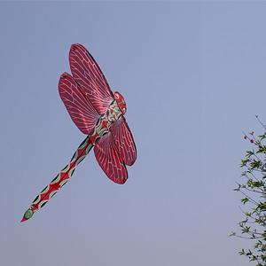 01_Dragonfly Kite