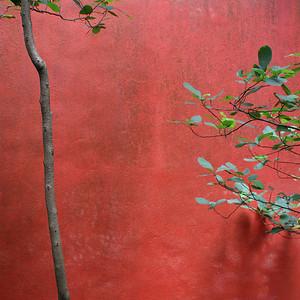 02_Wan Chi Wall