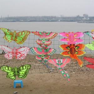 11_Wuhan Kites