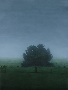 South West Paddock, oil on linen 82 x61 cm
