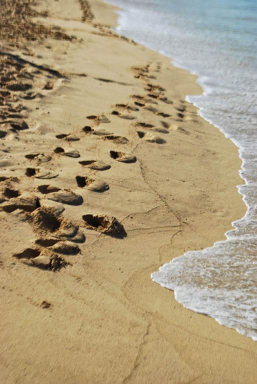 Footprints in the Sand - Waikiki, Hawaii - (c) October 2010 Daniel Yoffee