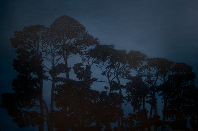 Old Pines Silhouette, oil on linen 120 x180cm