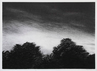 Charcoal #4, charcoal on paper image 52 x72 cm framed 72 x92 cm SOLD