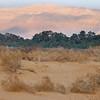 San Dunes at Samar (c) Daniel Yoffee
