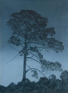 Falling Light, oil on paper 71 x51 cm 2015 SOLD