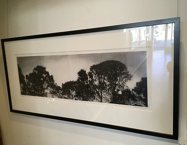 Treeline , charcoal on paper image 25 x79cm SOLD