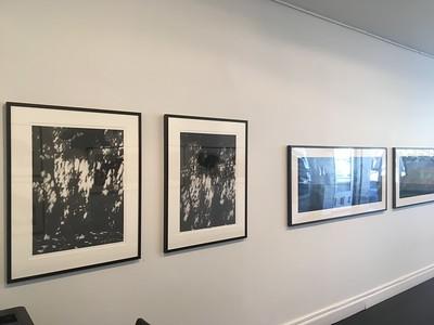 Installation at Olsen Irwin Gallery 2016