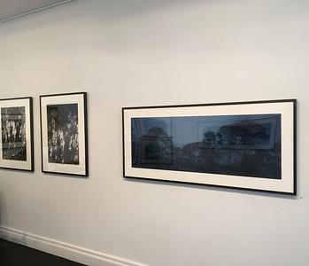 Installation at Olsen Irwin Gallery Sydney 2016 SOLD