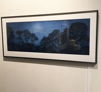 Winchelsea Pines, oil on paper image 52 x148cm SOLD