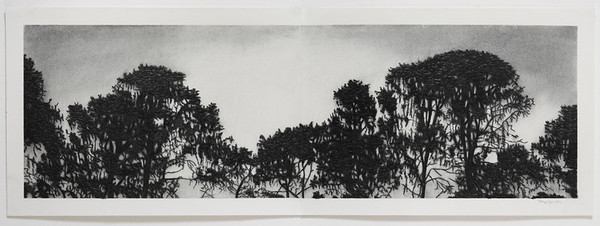 Treeline, charcoal on paper , diptych image 25x79cm Framed SOLD