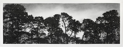 Railway Pines, charcoal on paper, diptych image 52 x148cm SOLD