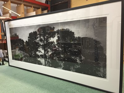 Trainline Pines, charcoal on paper diptych image 52 x148cm Framed SOLD
