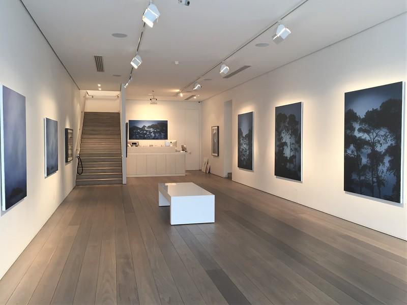 Shifting Light, Olsen Gallery 2017