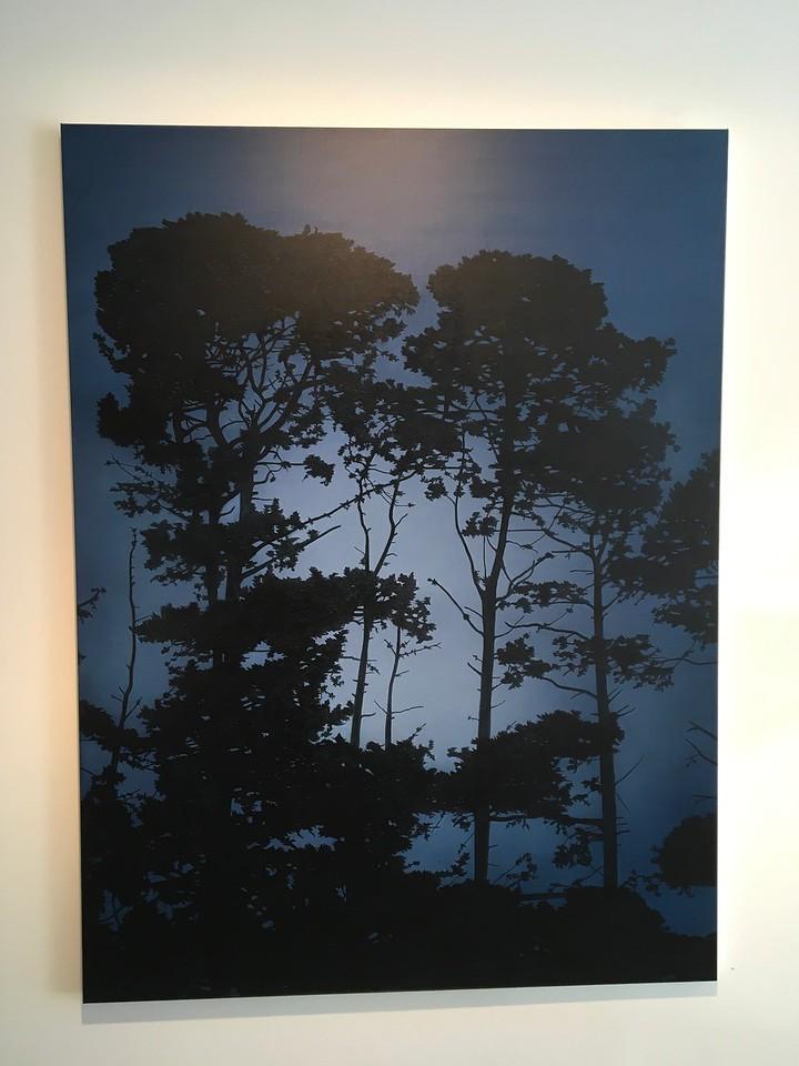 Falling Light, oil on linen 183 x137cm 2017 $16,500 AUD